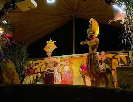 The lion king in Camping Valldaro