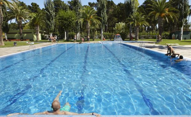 Pool with palm trees at Camping Valldaro