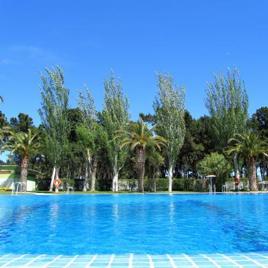 Piscina palmeras Playa de Aro