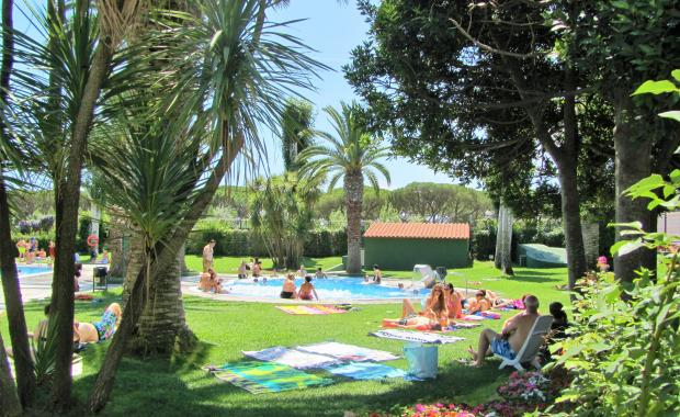 Vegetation of the camping pools