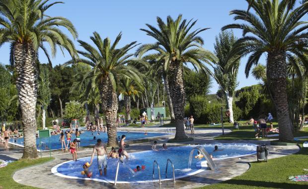 Zwembad met aangelegde tuin