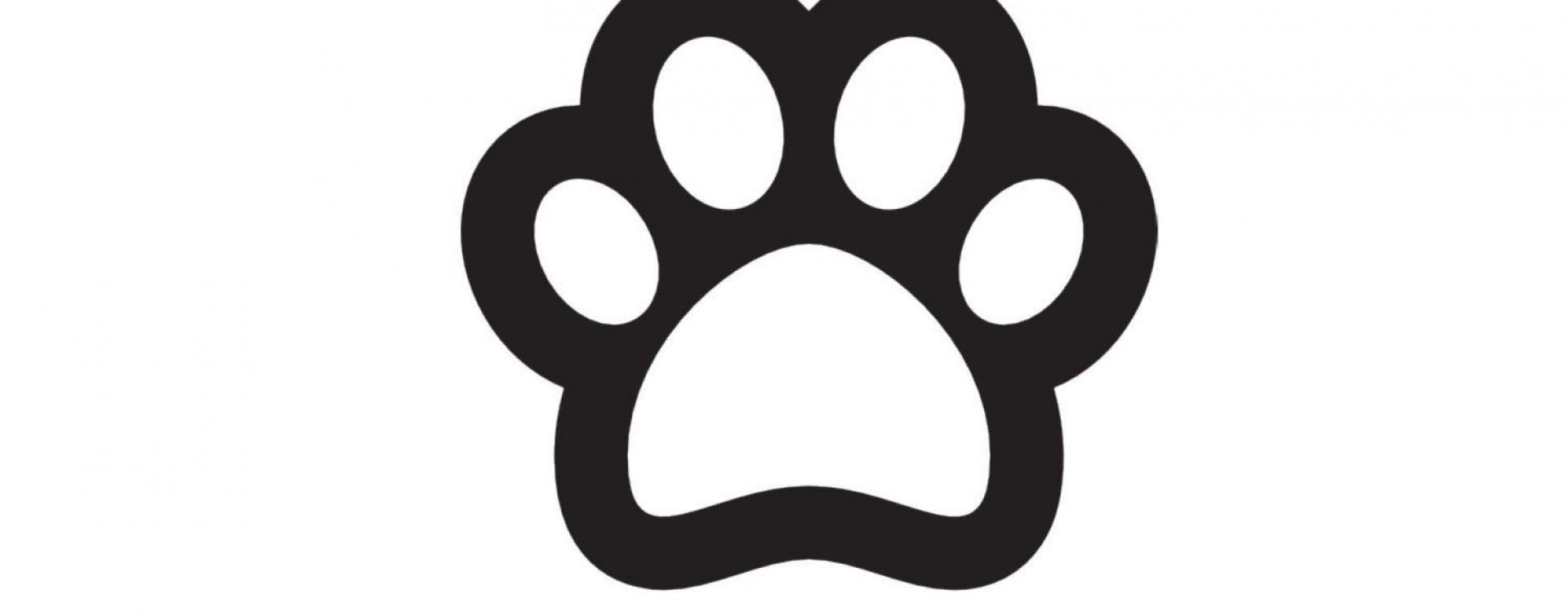 Bungalow Thalassa chiens